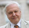 "There is no throwing plastic ""away"" by David Attenborough"